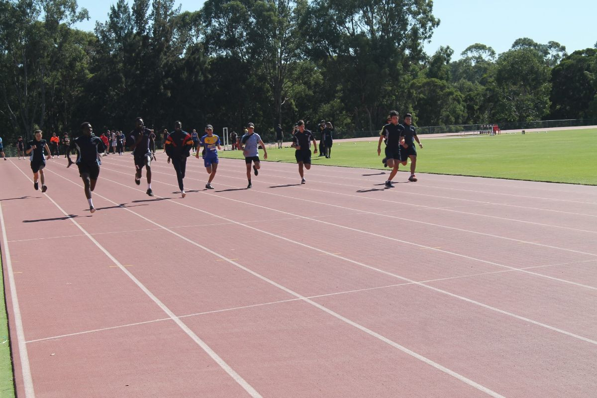 Athletics Carninal 13