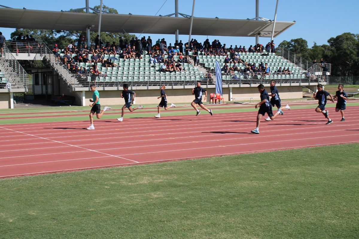 Athletics Carninal 7